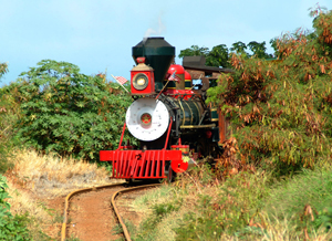 Maui Sugar Cane Train
